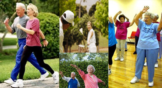 Fitness Seniors
